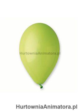 balony_pistacjowe_hurtownia_animatora_pl